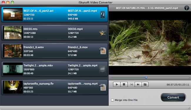 iSkysoft Video Converter for Mac
