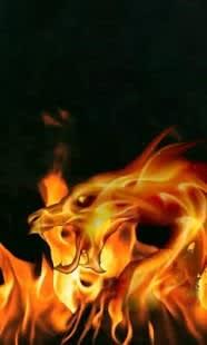 Fire Dragon Live Wallpaper