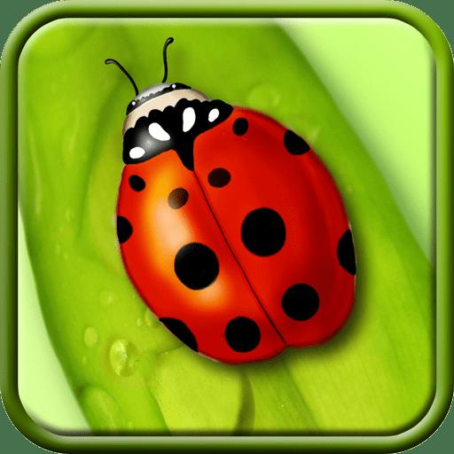 Ladybug Live Wallpaper