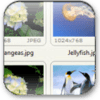 FastStone Image Viewer 5.2