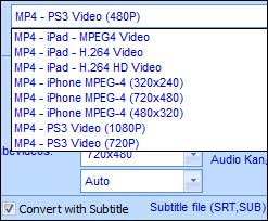 Power RM AVI MPG VCD WMV Converter