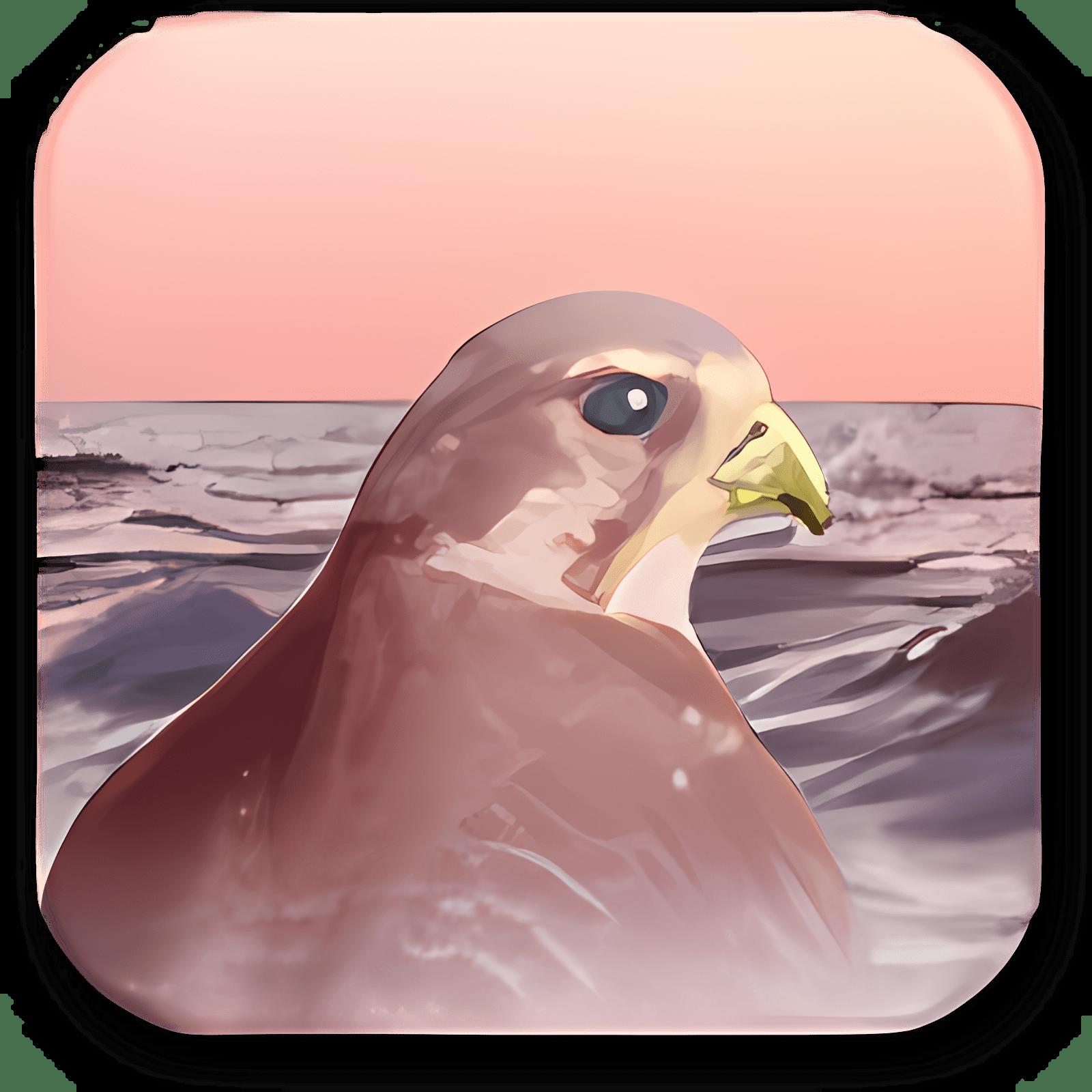Falco Auto Image 3.8