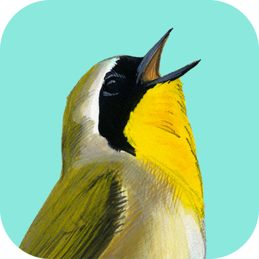 Song Sleuth: Auto Bird Song ID w/David Sibley Info 1.0.5