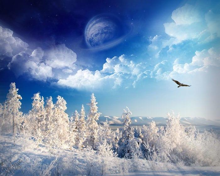 Winter Wonderland Wallpaper Pac