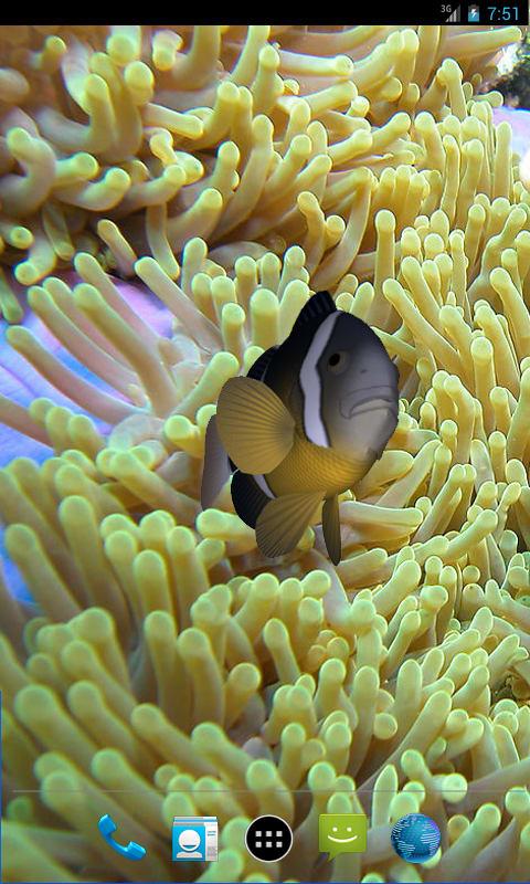 3D Clownfish Live Wallpaper