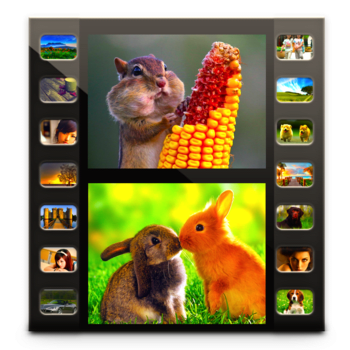 Photo Movie Pro - Slideshow Video DVD Lite 3.1.7