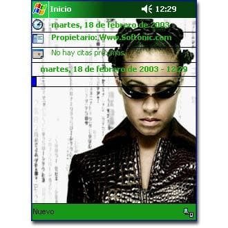 Matrix Reloaded: Niobe