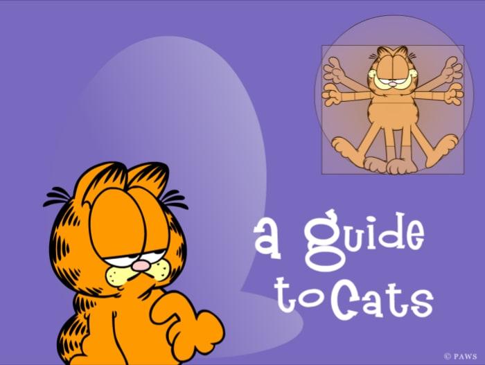Garfield Guide to Cats Wygaszacz Ekranu