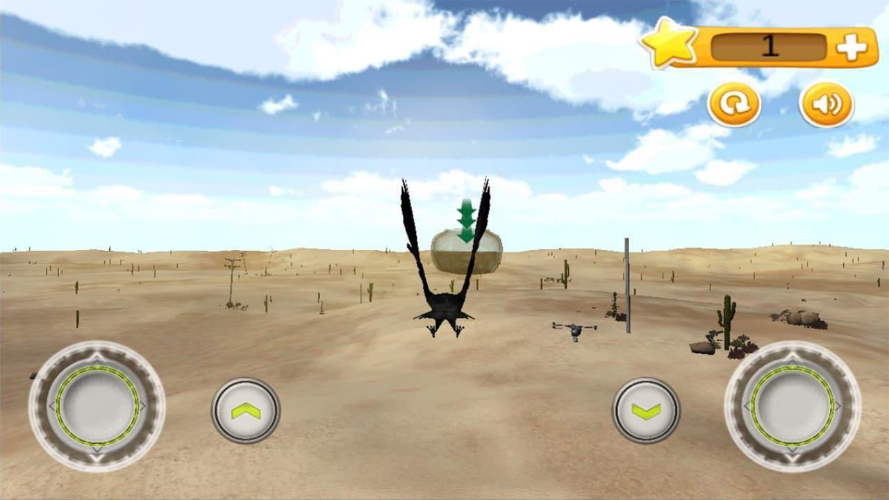 Wings of Desert