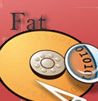 Disk Doctors FAT Data Recovery