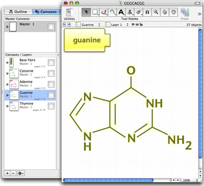 Omnigraffle for mac download pros ccuart Image collections