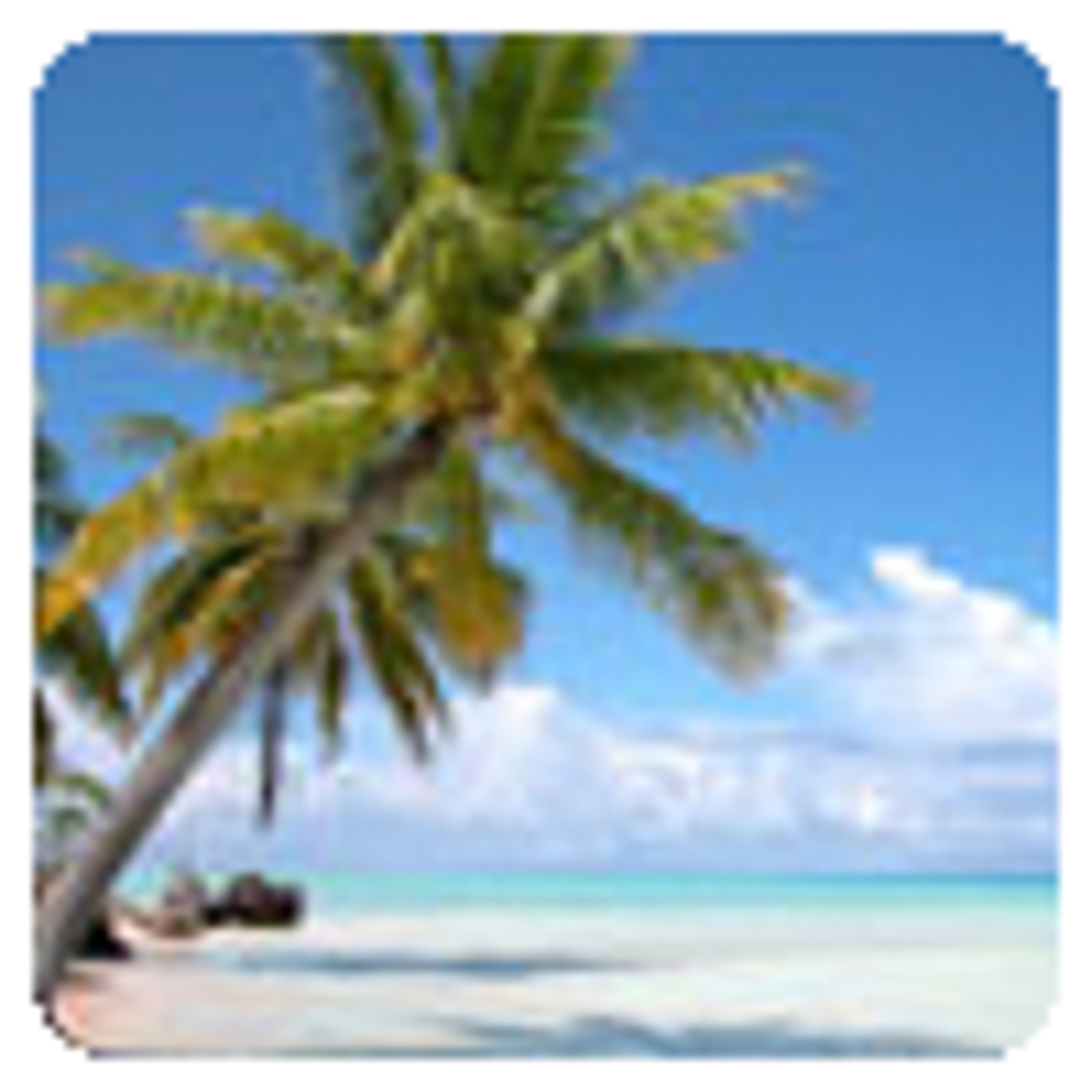Ecran de Veille Tahiti