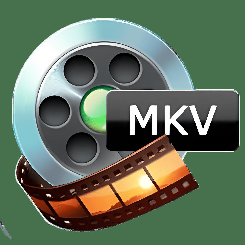 Aiseesoft MKV Converter
