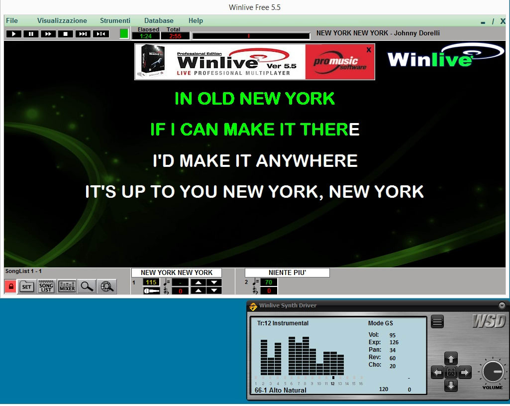 Winlive Synth Driver WSD