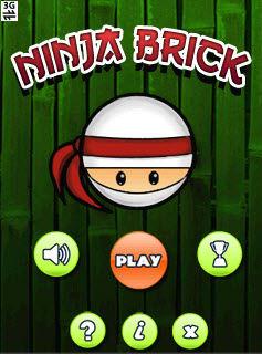 Ninja Brick