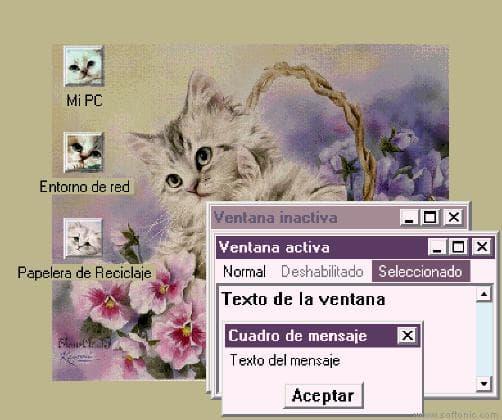 Kitten Charisma Theme