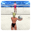 Beach Volleyball 1.0