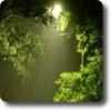 After Rain Theme by Rehman 1.0