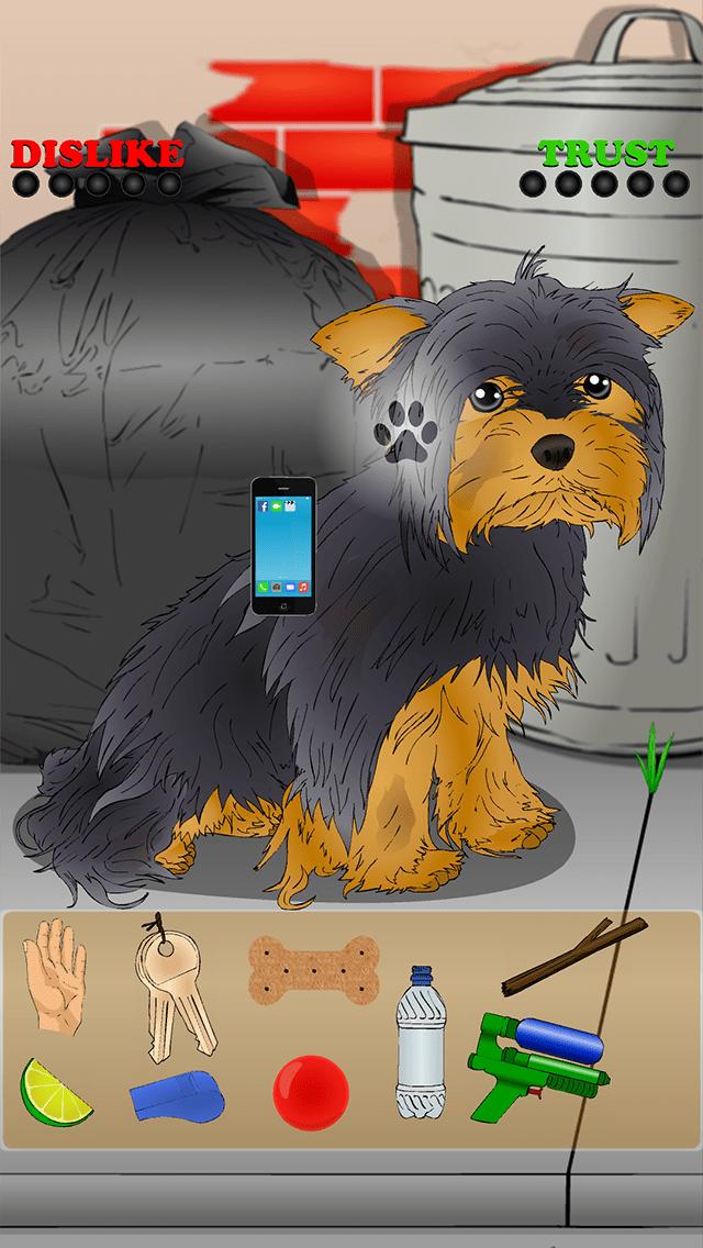 Poor Little Puppy - Yorkie