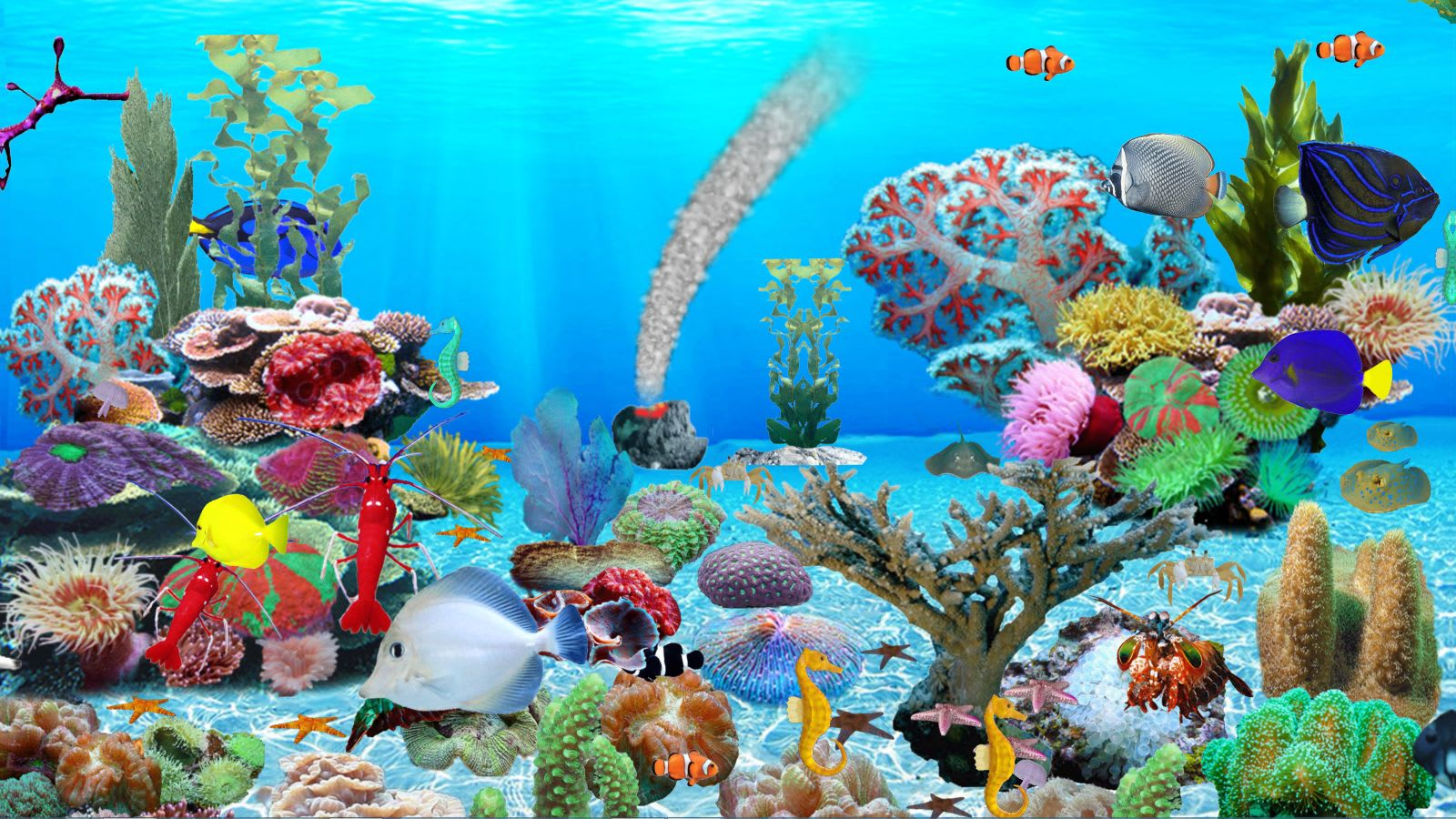 Blue Ocean Aquarium Download