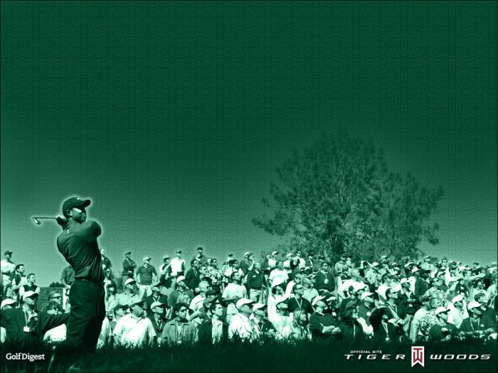 Fond d'écran Tiger Woods
