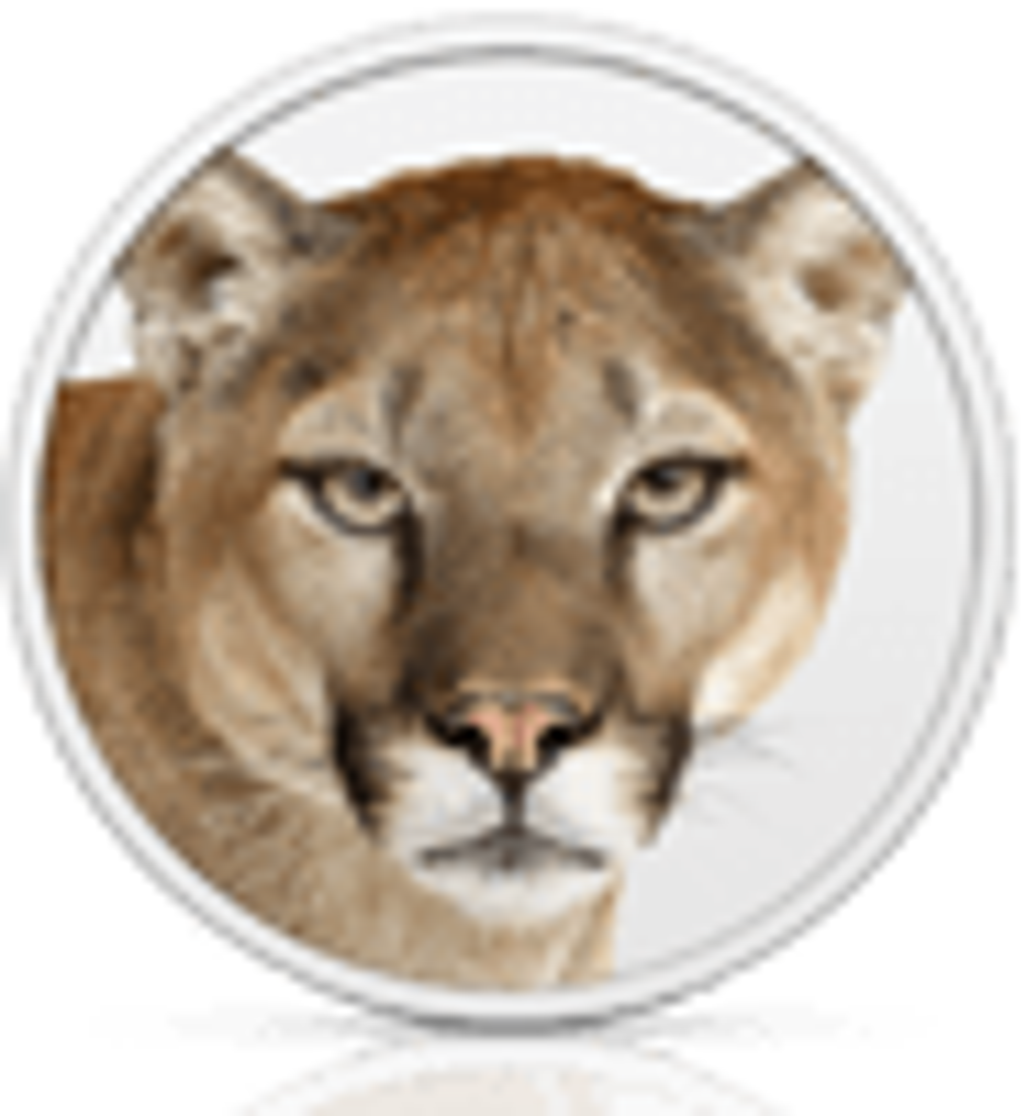OS X 10.8.1 Update