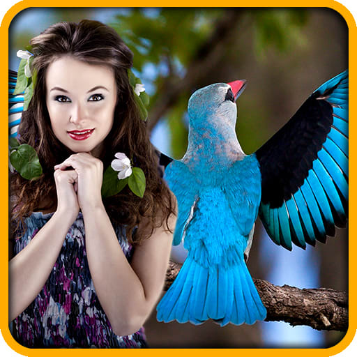 Birds Photo Editor