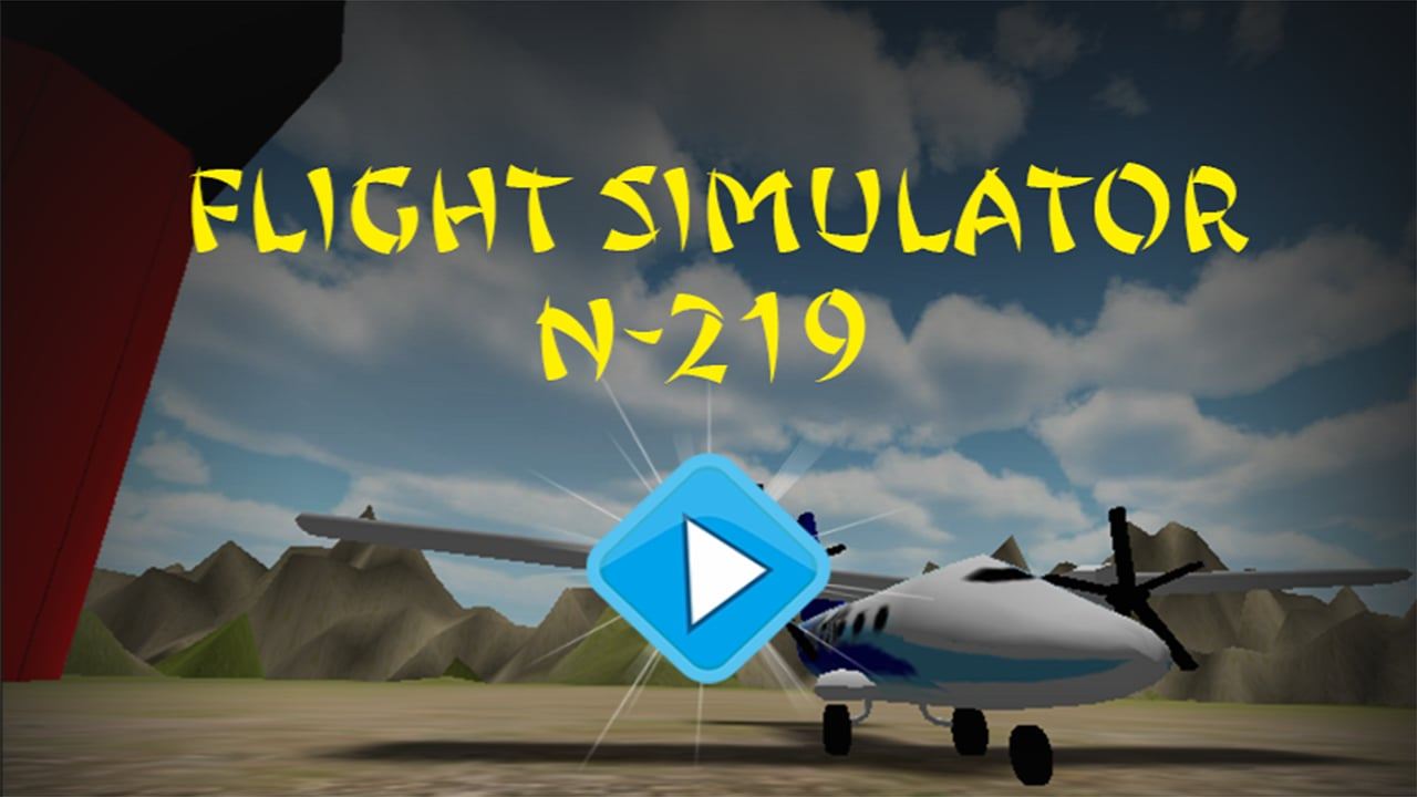 Flight Simulator N219