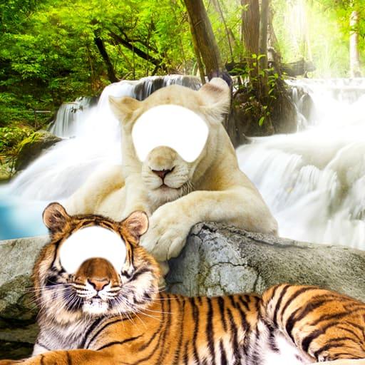 Lion & Tiger Photo Editor
