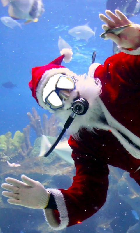 Funny Christmas Photo Editor