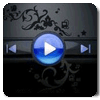 Windows Media Player Skin