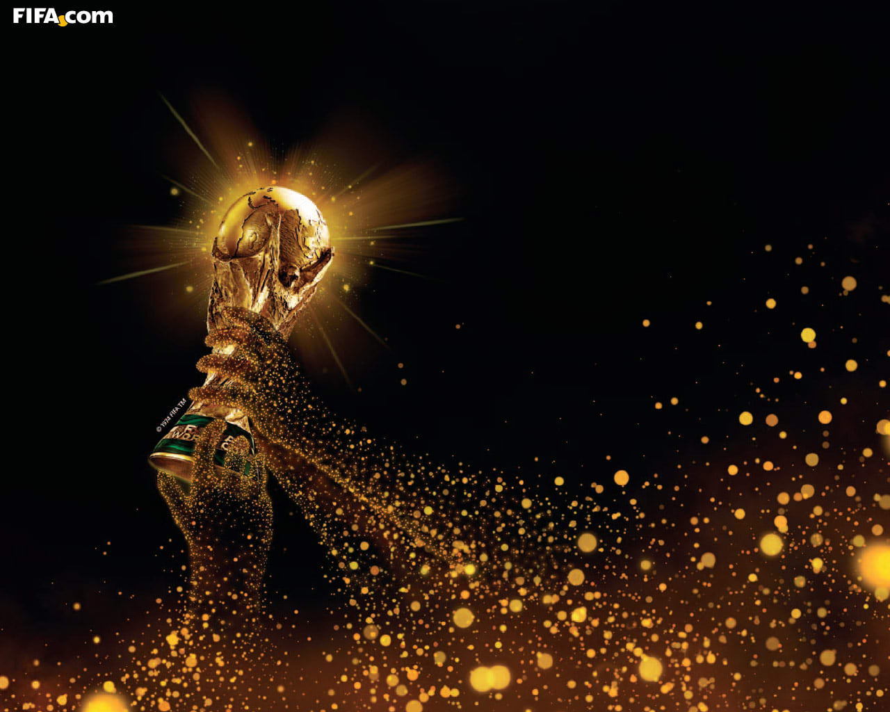 FIFA 2010 World Cup Wallpaper