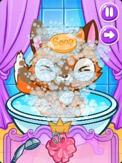 Cute Fox Salon - Spa&Makeover For Animals