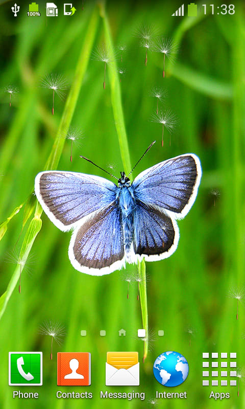 Butterflies Live Wallpapers