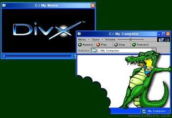 DivX Player For Linux
