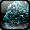 Leopard DST