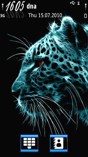 Leopard Theme DST