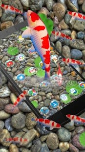 KOI Lucky Fish 3D Theme