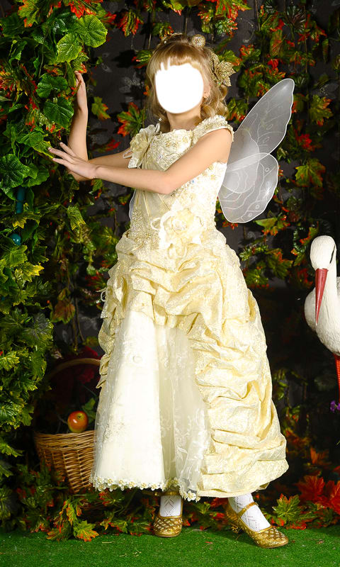 Fairy Dress Photo Montage