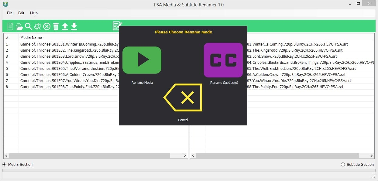 PSA Media & Subtitle Renamer