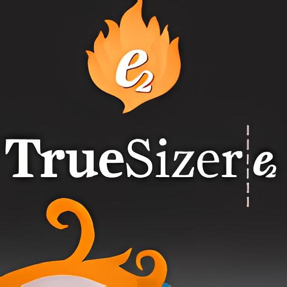 Wilcom Truesizer e2 2.0 B