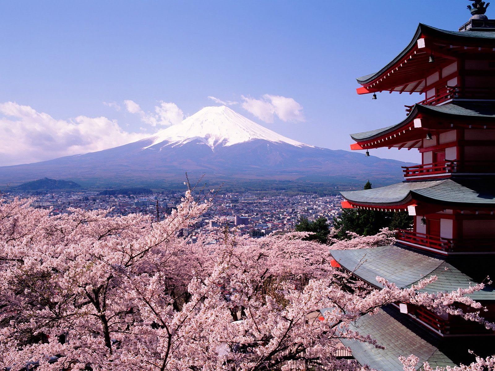 Wallpaper Japanische Kirschblüten