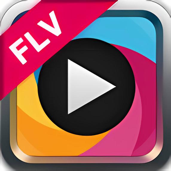 Easy FLV Converter  3.1.19