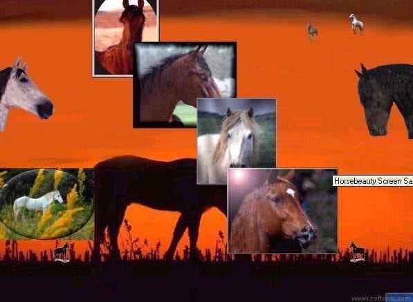 Horsebeauty Screen Saver