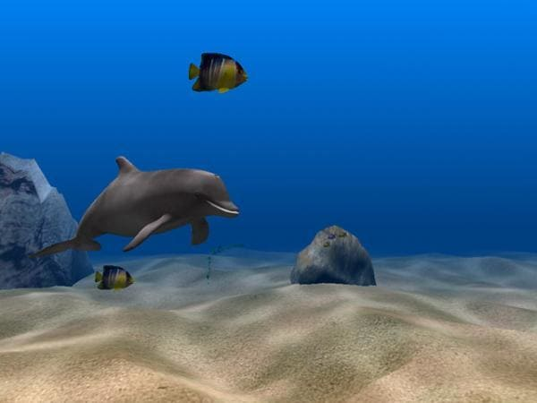 Dolphin Aqua Life 3D Screensaver for Windows ...