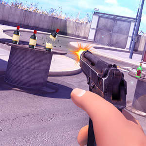 Bottle Shooter 3D Game Varies with device