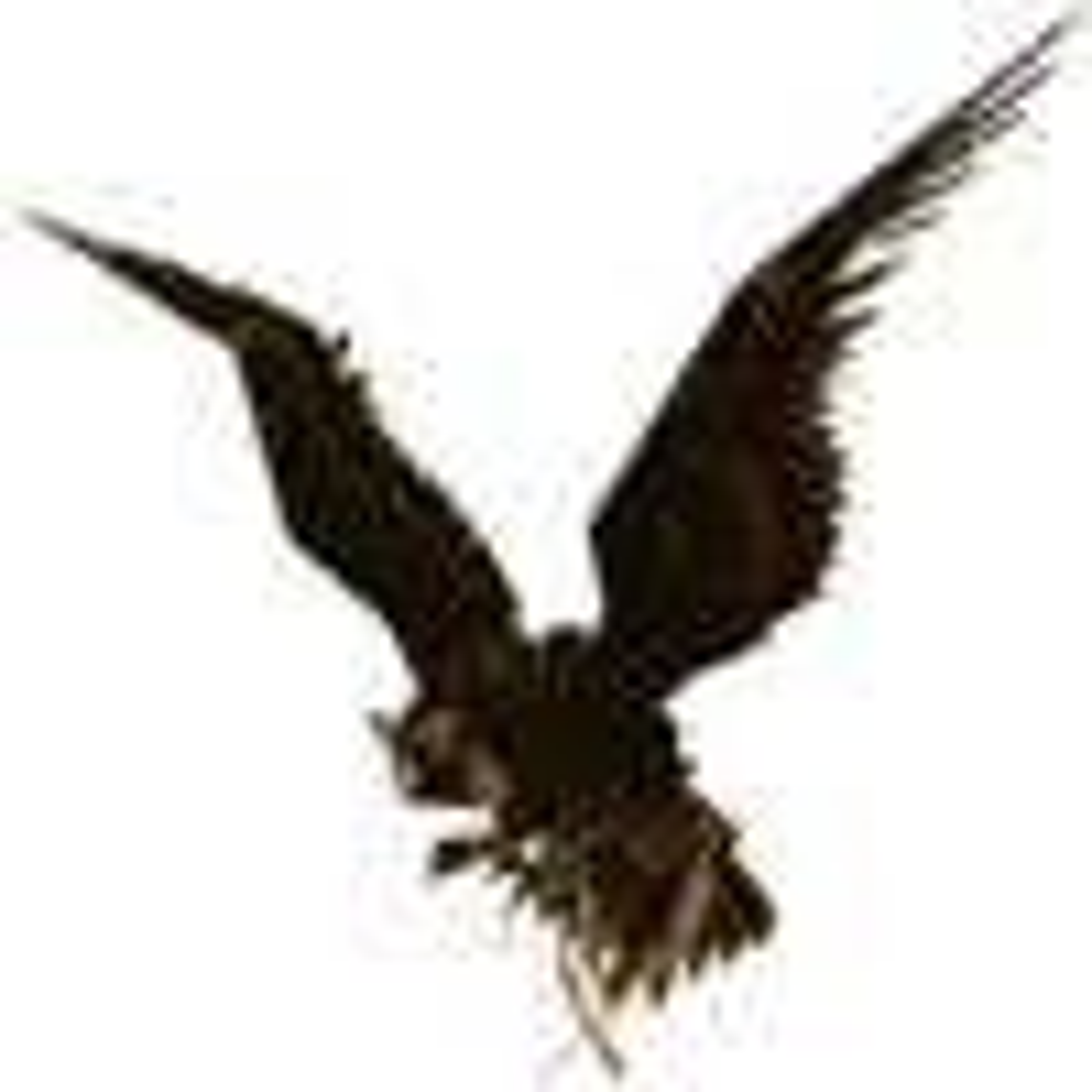 Hawkscope