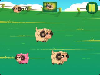 Sheep Evolution