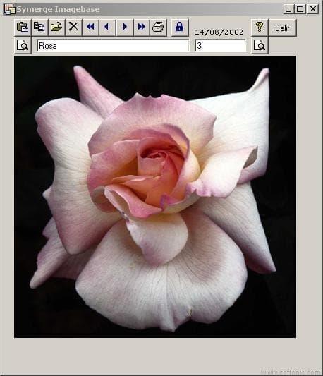 Symerge Imagebase