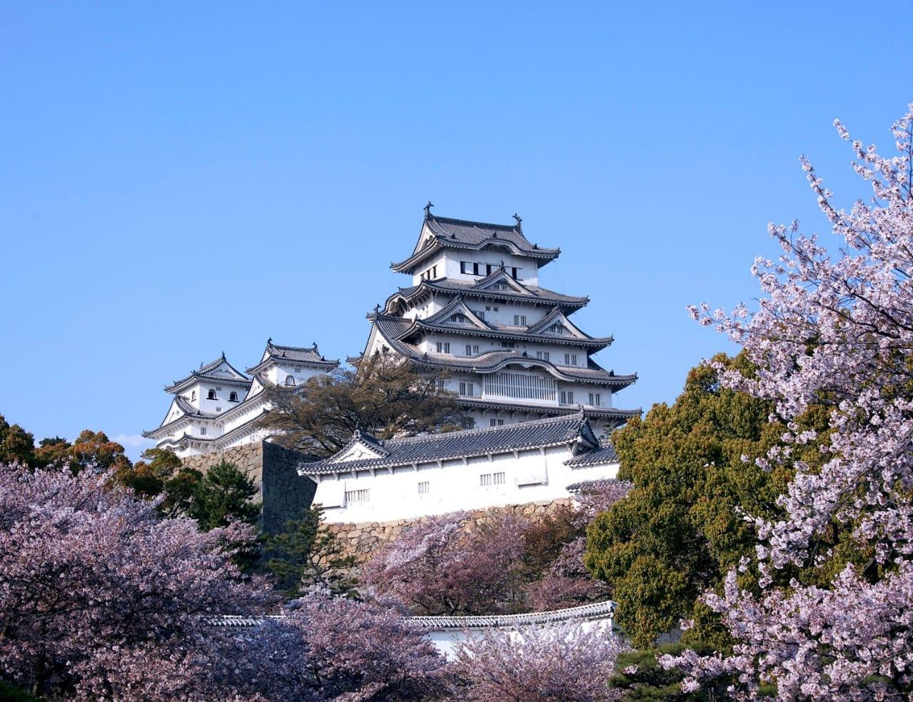 日本の桜テーマ